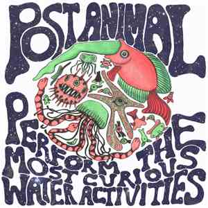 Post Animal - Post Animal Perform the Most Curious Water Activities download